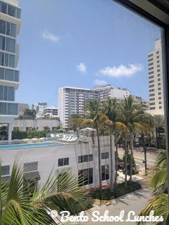 Why We Love Miami Beach and Fun Things To Do