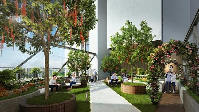 Vườn thượng uyển, không gian xanh thư giãn trên cao