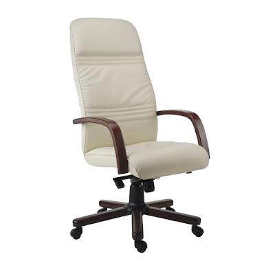 ankara,ofis koltuğu,makam koltuğu,müdür koltuğu,yönetici koltuğu,ofis sandalyesi