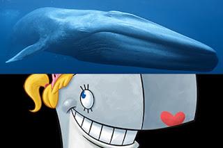 Pearl Krabs adalah Paus Biru