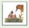 مخلص درس السلوكات البيئية - سلوك الحيوان.