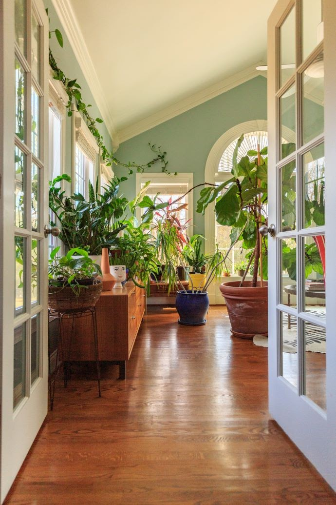 Sunroom filled with plants-designaddictmom