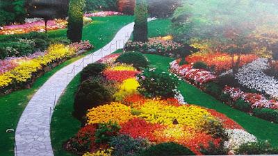 Jasa Tukan Taman Surabaya | Taman Terapi dan Penyembuhan | Apotek Hidup