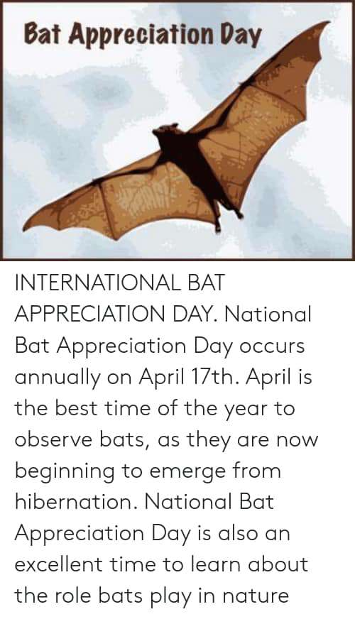 International Bat Appreciation Day Wishes Sweet Images