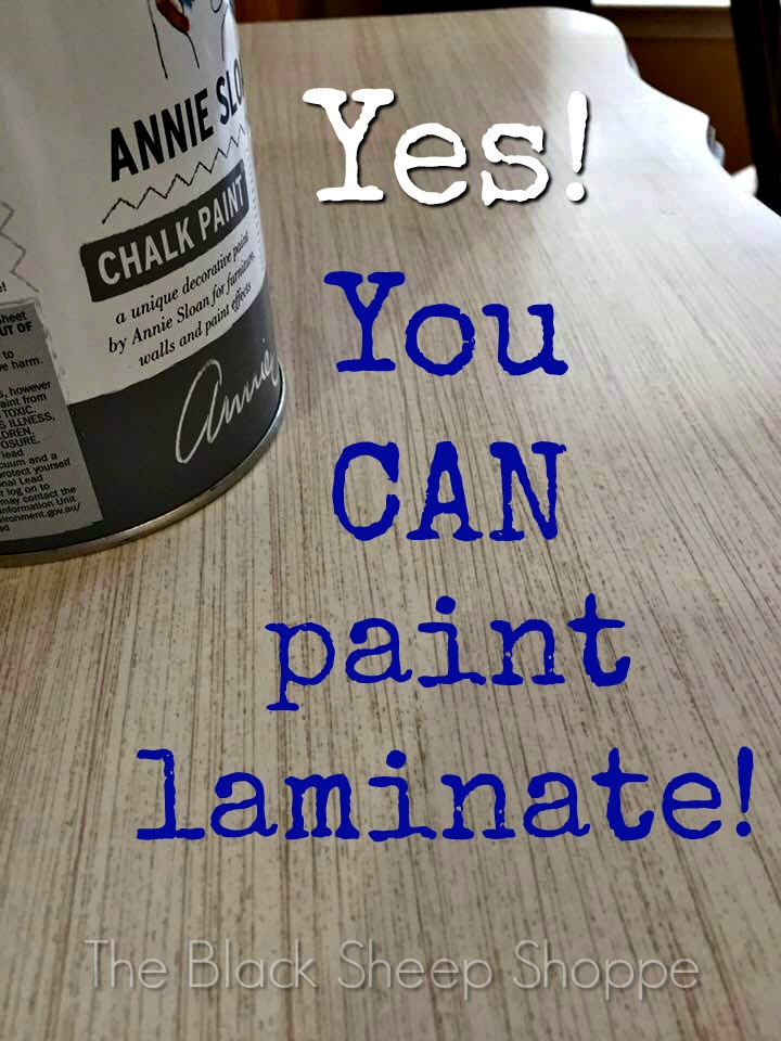 Yes you can paint laminate!