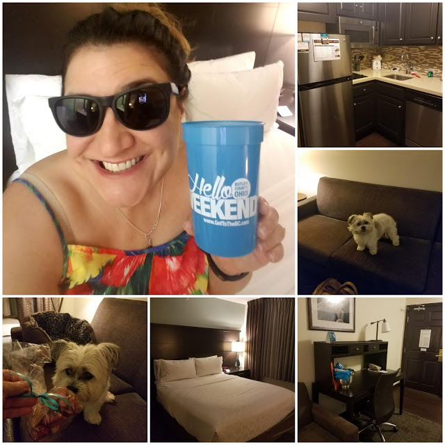 Staybridge Suites, dog friendly hotel in Butler Co, dog friendly