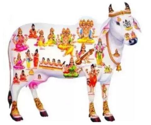 रोने के दिन हुए ख़त्म 05 नवम्बर से अब नौकरी,पैसा और प्यार भी मिलेगा,इन 3 राशियों से प्रसन्न है 33 करोड़ देवी देवता