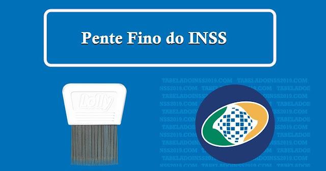 Pente-fino do INSS irá revisar Benefícios até 2022: Veja como se preparar!