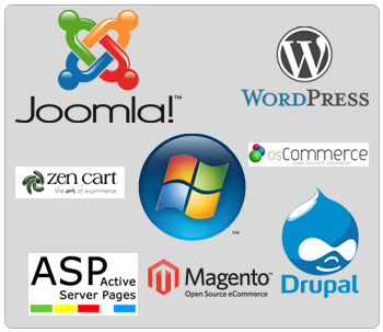 Best and Cheap Windows Hosting in Netherlands