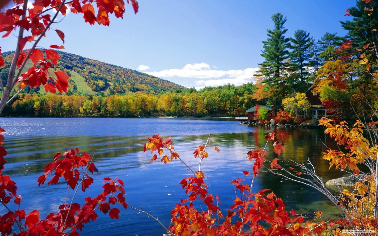 Hd Background Wallpaper Free Download Beautiful Nature Hd