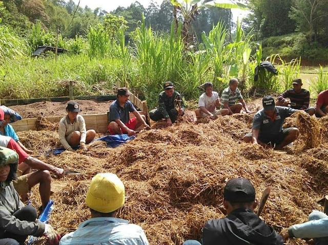 Kembangkan Pupuk Kompos, POPT Provinsi Sulsel Bersinergi Dengan Kelompok Tani Rante Makale