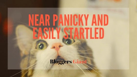 Anxiety Near panicky and easily startled