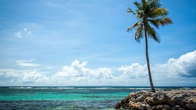 HD Phoenix Wallpaper, Sea, Summer, Tropical Island