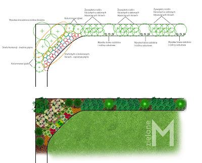 Cienista rabata pod płotem, projekt ogrodu w cieniu, żywopłot, projekt ogrodu