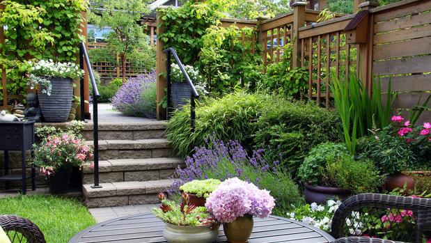 Dream gardens provens lska vo av z hrada for Home design 3d outdoor garden 4 0 2