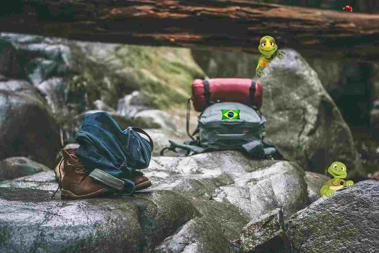 Quando pensamos em florestas e matas nativas, o Brasil tem a maior área de proteção ambiental do mundo - 66,3% do território brasileiro é coberto por áreas verdes. E como fica essa preservação? O BMV (Brasil Mata Viva), que foi criado 2007 por um grupo de líderes, assumiu a missão de gerar e desenvolver soluções em sustentabilidade por meio de uma metodologia que gera Créditos de Floresta para o produtor que preserva a sua área e...