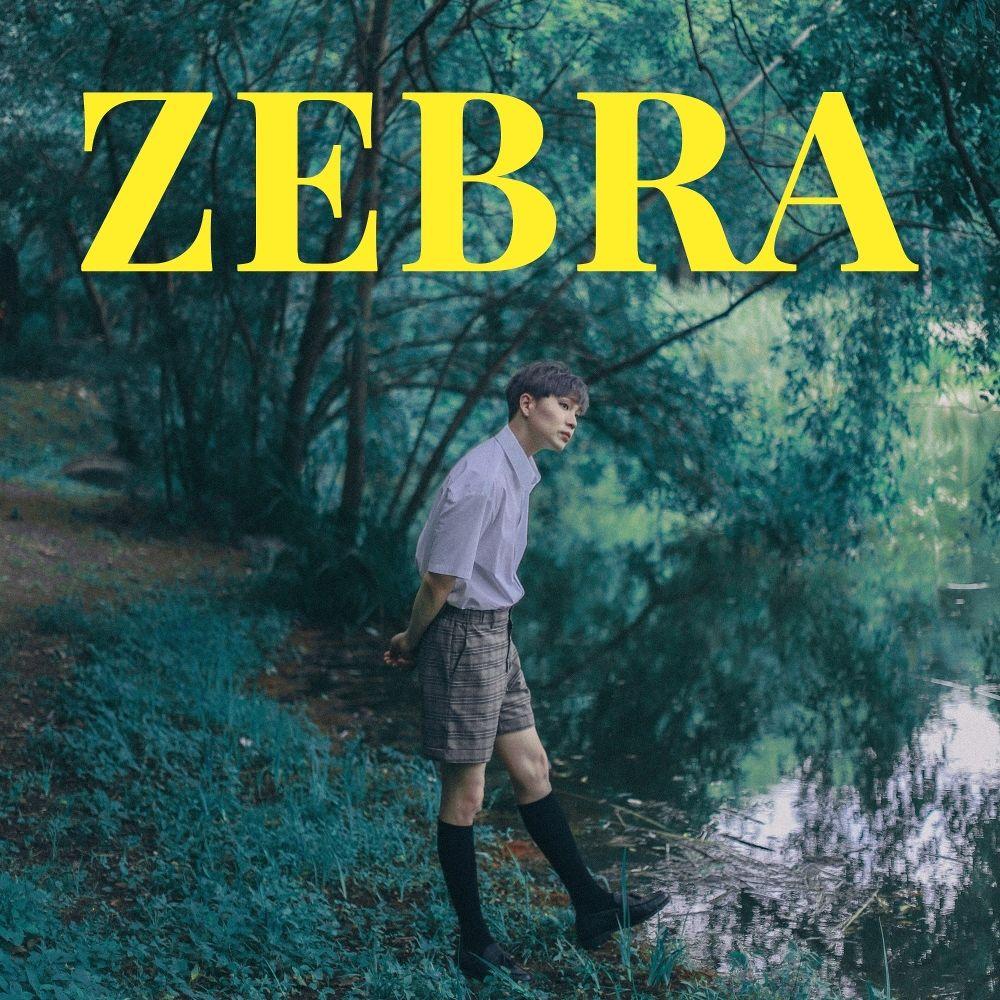 INTEC – ZEBRA – Single
