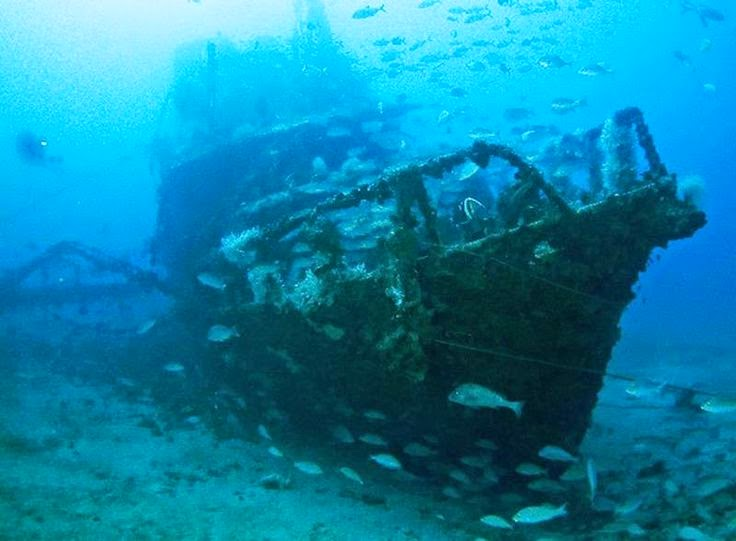 Best Places To Go Scuba Diving On Earth | The Shipwreck Yongala. Australia