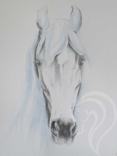 abstract equine art, contemporary equestrian art. Equestrian fine art