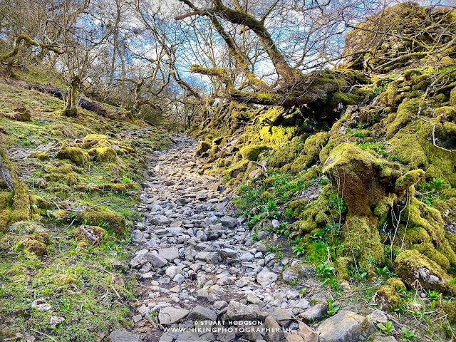 Keld muker walk circular river swaledale yorkshire dales wildflower meadow