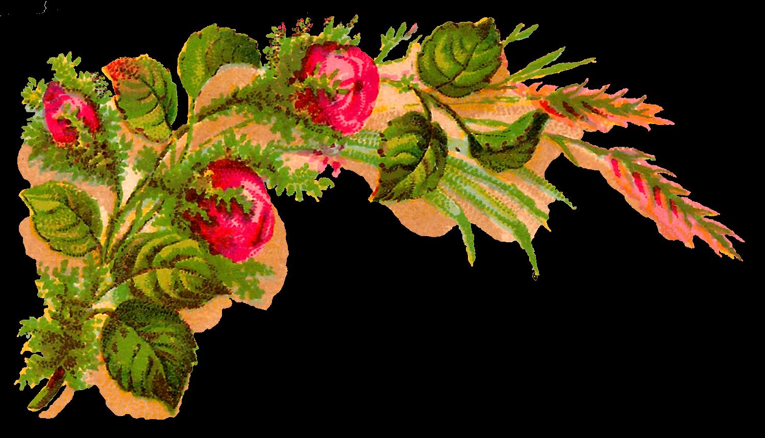 Antique Images Digital Decorative Flower Corner Download