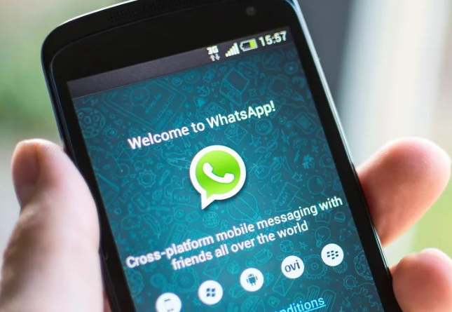 Whatsapp Beta Update Animated Stickers Support Coming Soon