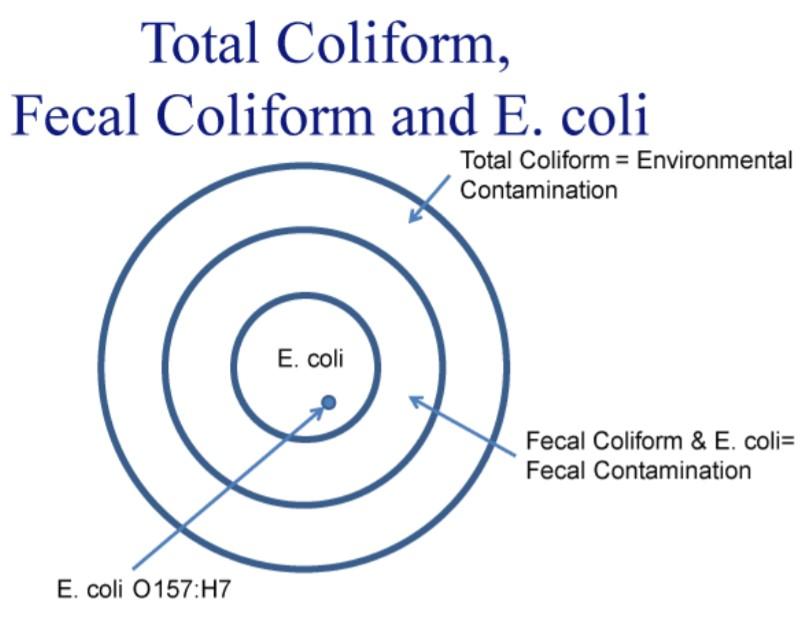 Mi a hatékony szénhidrogén randevú?