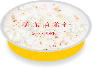 दही के साथ भुने जीरा खाने से लाभ कई गुना बढ़ जाता है in hindi, Eating cumin seeds with curd it benefits level increased in hindi,Eat roasted cumin with curd then see many benefits in hindi, Eat roasted cumin with curd then see many benefits in hindi, दही के साथ भुने जीरे के अनेक फायदे hindi, Many benefits of roasted cumin with curd in hindi, dahi ke sath bhune jeere ke anek fayde hindi, dahi aur bhuna jeera hindi,dahi aur bhuna jeera ke fayde in hindi, dahi khane ke fayde in hindi, Curd increases appetite in hindi, High blood pressure control in hindi, Curd Diabetes Control in hindi,Keep yogurt heart healthy in hindi, curd benefits in hindi, dahi khane ke fayde for skin in hindi, curd for strong bones in hindi, best yogurt for bone health in hindi, curd for weight gain in hindi, curd and jaggery for weight loss in hindi, dahi se labh in hindi, curd image, curd photo, curd jpeg, curd jpg,  curd pdf in hindi, क्यों सक्षमबनो इन हिन्दी में, कैसे सक्षमबनो इन हिन्दी में? सक्षमबनो sakshambano in hindi, saksham bano in hindi, in hindi, saksambano-saksambano phir se in hindi, sab se pahle saksambano in hindi, aaj hi sakshambano hindi, sakshambano ka matlab in hindi, sakshambano image, sakshambano photo, sakshambano jpeg, sakshambano jpg, sakshambano pdf, sakshambano pdf in hindi, sakshambano article in hindi, kaise sakshambane in hindi,