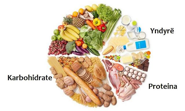 karbohidrate, proteina, dhe yndyrna