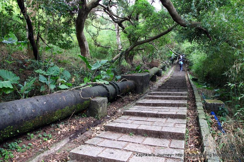 【臺北 士林】天母古道水管路上紗帽山