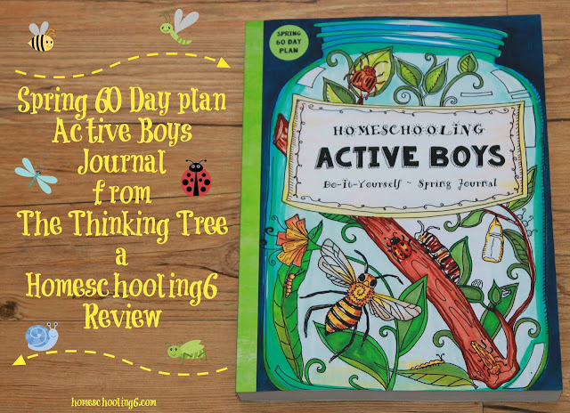 Active Boys Journal Review by Homeschooling6