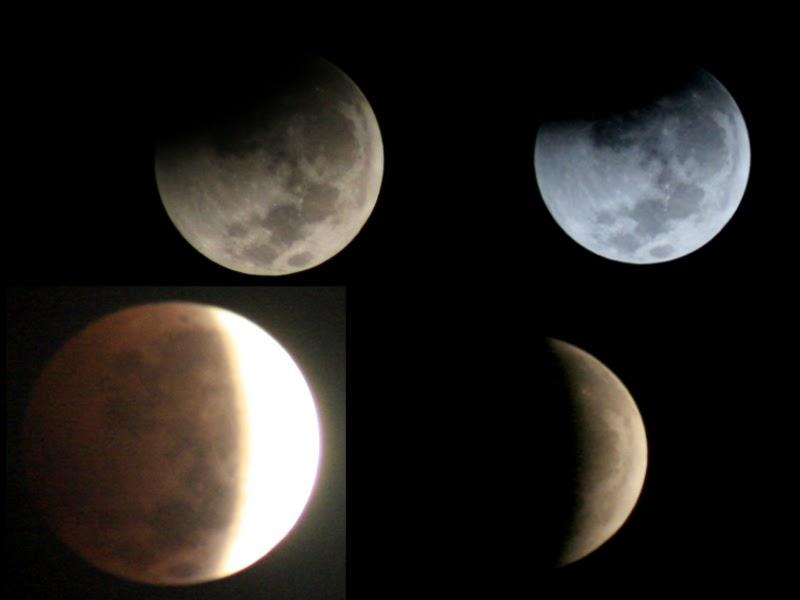 FENOMENA LANGKA Gerhana Bulan Total  Browsing Gambar