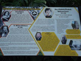 History of the Foster Botanical Garden - Honolulu, HI