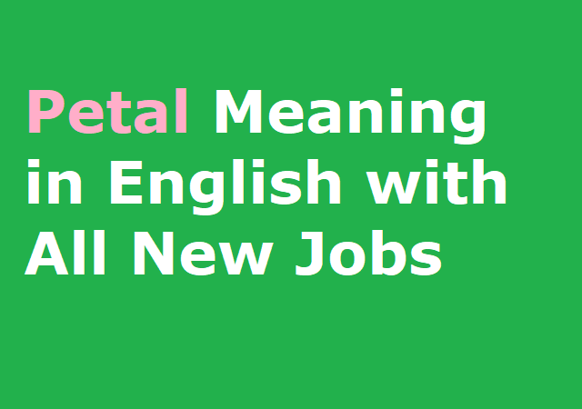 Petal Meaning in English with All New Jobs