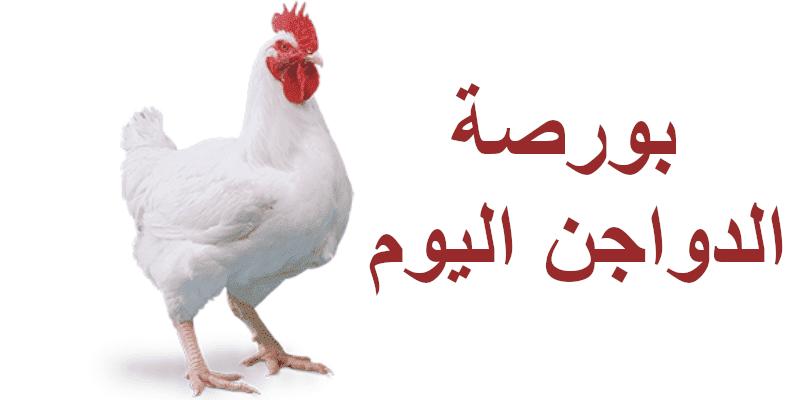 سعر الفراخ البيضاء والكتاكيت اليوم الإثنين