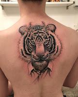 тату тигр на спине