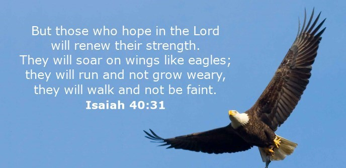 But those who hope in the Lord will renew their strength. They will soar on wings like eagles; they will run and not grow weary, they will walk and not be faint.
