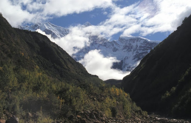 New insights into the relationship between erosion and tectonics in the Himalayas