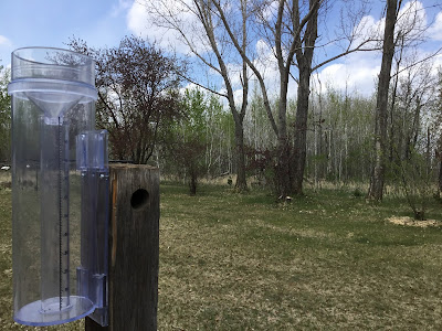 A photo showing a clear plastic rain gauge mounted to a wooden post.