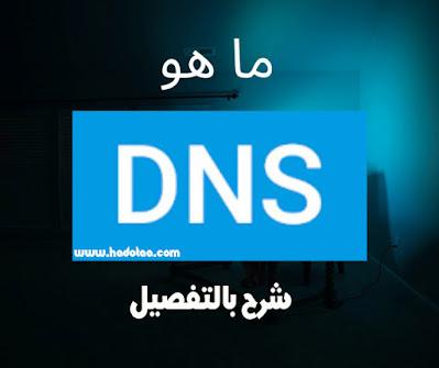 ما هو Dns اسم النطاق وأهميته شرح بالتفصيل