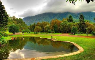 Kebun Raya Cibodas Cianjur