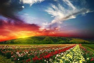 Долината на цветята