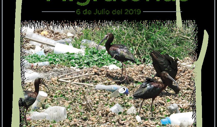 Sé la solución a la contaminación por plasticos