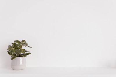 ناعمة خلفيات كيوت للتصميم ساده