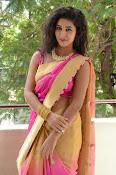 pavani new photos in saree-thumbnail-33
