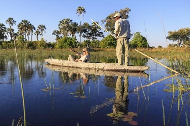Okavango Delta, Botswana: The Complete Guide
