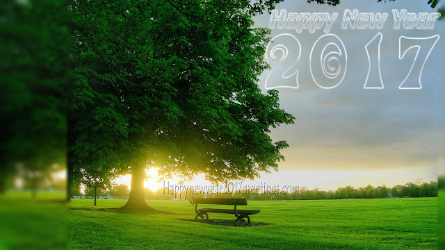 New Year 2017 Nature Background Wallpapers For Desktop