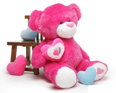 gấu Teddy 1