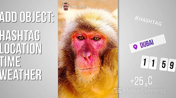 Instagram Story Toolkit[Motion Elements][After Effects][10819745]