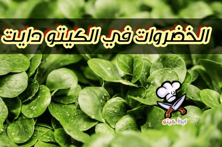 خضراوات الكيتو دايت النباتي -ابدأ كيتو